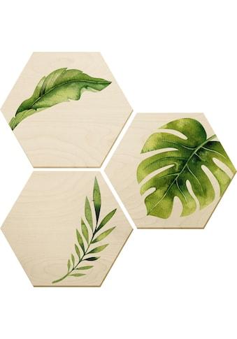 Wall-Art Holzbild »Kvilis -Dschungel 04«, (Set) kaufen
