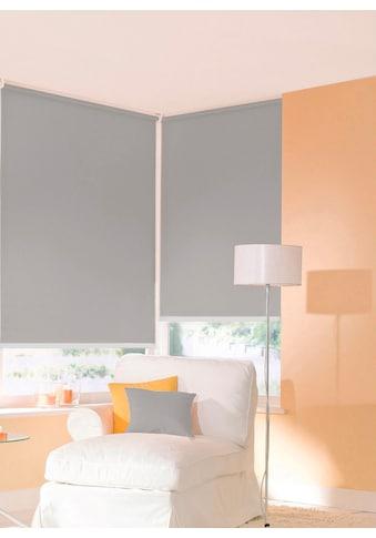 sunlines Seitenzugrollo »One size Style uni«, Lichtschutz, freihängend, Made in Germany kaufen