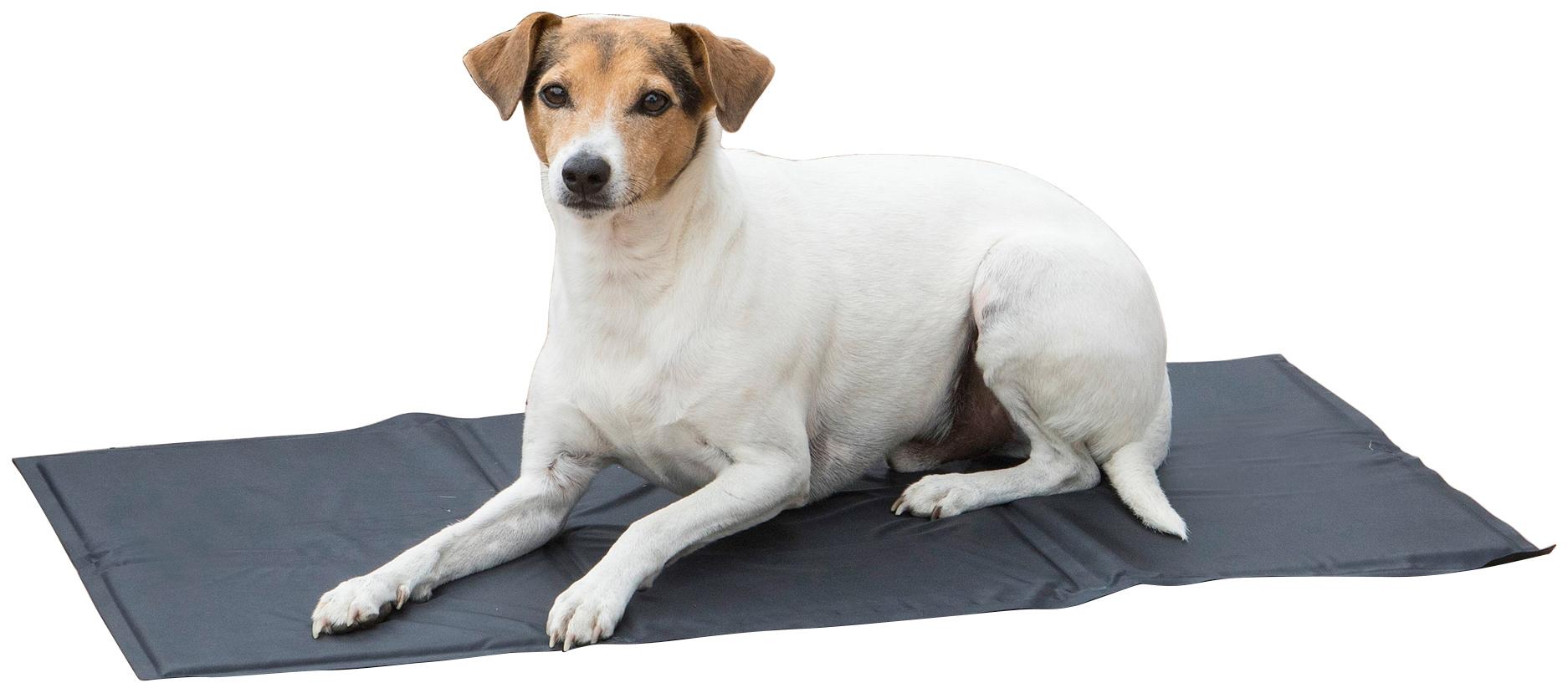 Image of ABUKI Hundematte »Kühlmatte«, für Hunde, 50x90 cm