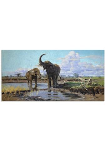 Artland Glasbild »Elefanten an der Wasserstelle.«, Wildtiere, (1 St.) kaufen