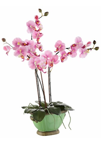 I.GE.A. Kunstpflanze »Orchidee« kaufen