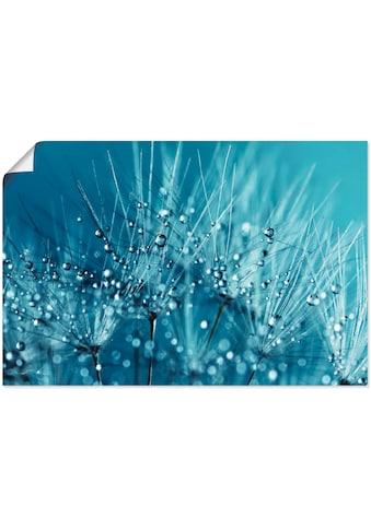 Artland Wandbild »Blaue glitzernde Pusteblume«, Blumen, (1 St.), in vielen Grössen &... kaufen