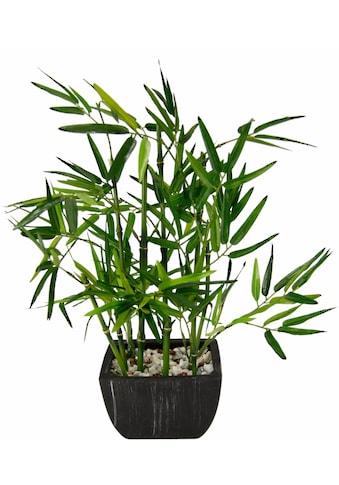 Kunstpflanze »Bambus« (1 Stück) kaufen