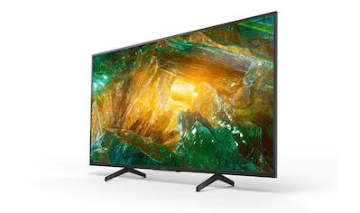 "Sony LED-Fernseher »KD-43XH8096«, 109,22 cm/43 "" kaufen"
