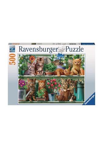 Ravensburger Puzzle »Katzen im Regal« kaufen