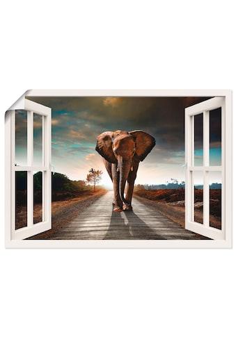 Artland Wandbild »Elefant auf Strasse«, Fensterblick, (1 St.), in vielen Grössen &... kaufen