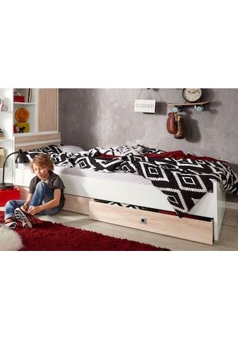 Wimex Bett »Joker« kaufen