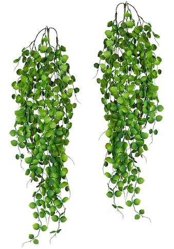 Creativ green Kunstranke »Blatthänger x3, ca 6«, 2er Set kaufen