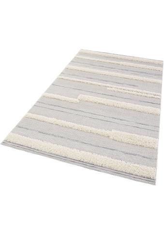 Teppich, »Ifrane«, MINT RUGS, rechteckig, Höhe 35 mm, maschinell gewebt kaufen