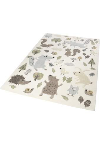 Kinderteppich, »Forest«, Sigikid, rechteckig, Höhe 13 mm, maschinell gewebt kaufen