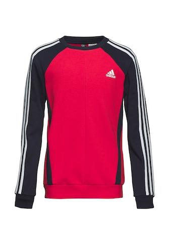 adidas Performance Sweatshirt »B BOLD CREW« kaufen