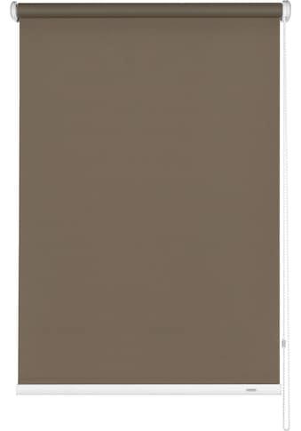 GARDINIA Seitenzugrollo »Uni-Rollo Abdunklung«, verdunkelnd, 1 Stück, im Fixmass kaufen