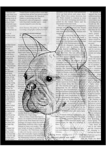 G&C Bild »NEWSPAPER BULLDOG III«, gerahmt kaufen