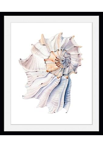 queence Bild »Aaron«, Meer, (1 St.) kaufen