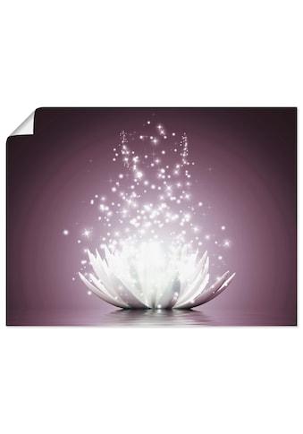 Artland Wandbild »Magie der Lotus-Blume«, Blumen, (1 St.) kaufen