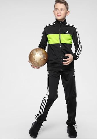 adidas Performance Trainingsanzug »TIBERIO« (Set, 2 tlg.) kaufen