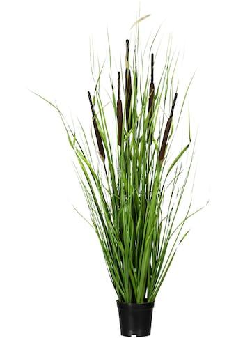 Creativ green Kunstgras »Grasbusch mit Schilfkolben« (1 Stück) kaufen