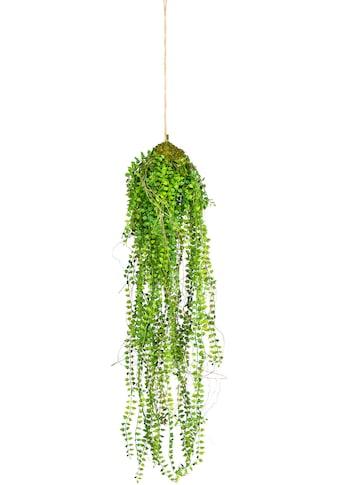 Creativ green Kunstranke »Miniblatt-Hänger« kaufen