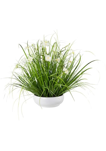 Creativ green Kunstgras »Grasbusch mit Cosmea« (1 Stück) kaufen