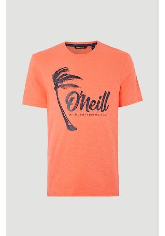 O'Neill T - Shirt »Palm graphic« kaufen