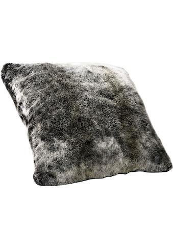 Star Home Textil Dekokissen »Luchs«, besonders weich, hochwertig kaufen