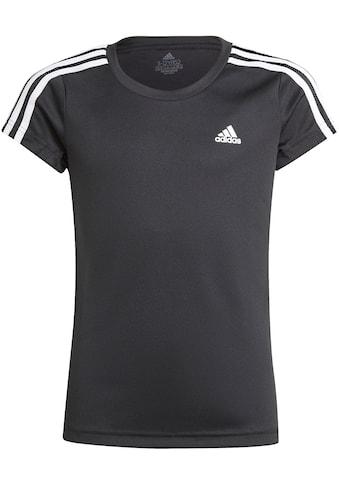 adidas Performance T-Shirt »DESIGNED TO MOVE 3-STREIFEN T-SHIRT« kaufen