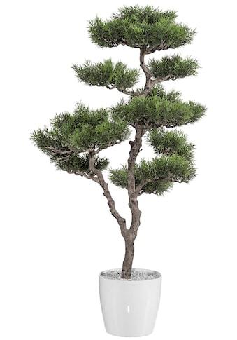 Creativ green Kunstbaum »Bonsai Zeder«, im Kunststofftopf kaufen