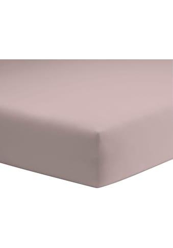 Schlafgut Spannbettlaken »Jersey-Elasthan«, für faltenfreien Sitz kaufen