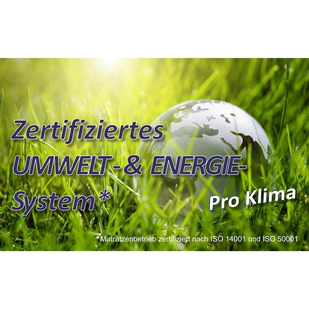 BeSports Lattenrost »Duo Powerflex«, 28 Leisten, Kopfteil manuell verstellbar, Note: SEHR GUT, Haus&Garten-Test 2018 & extraflach