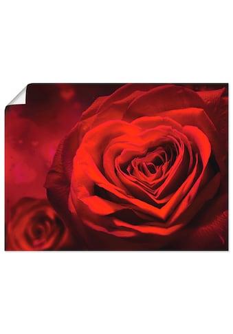 Artland Wandbild »Valentinseinladung mit Herzen und Rosen«, Blumen, (1 St.), in vielen... kaufen