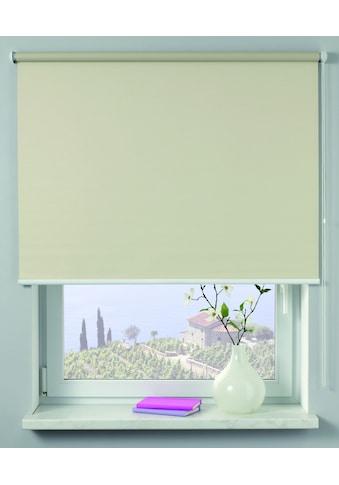 GARDINIA Seitenzugrollo »Uni-Rollo«, Lichtschutz, 1 Stück, im Fixmass kaufen