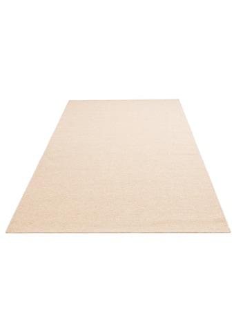 my home Wollteppich »Sunil«, rechteckig, 10 mm Höhe, reine Wolle, Wohnzimmer kaufen
