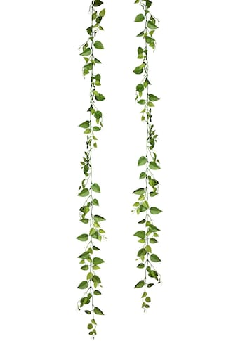 Creativ green Kunstranke »Philoblatt-Girlande«, 2er Set kaufen