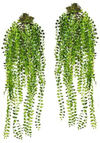 Creativ green Kunstranke kaufen