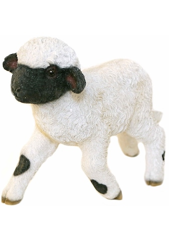 Casa Collection by Jänig Tierfigur »Schaf läuft, Höhe: 26,5cm« kaufen