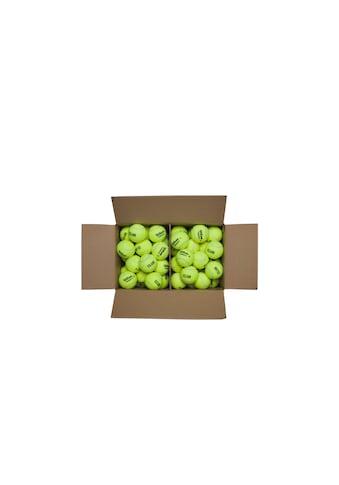 Wilson Tennisball »Box Triniti Club 72 Stück« kaufen