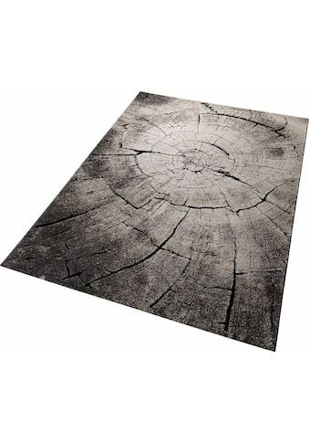 Wecon home Teppich »Wild Oak«, rechteckig, 13 mm Höhe, Holz Optik, Wohnzimmer kaufen