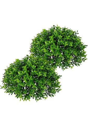 Creativ green Kunstpflanze »Teeblatt-Halbkugel« kaufen