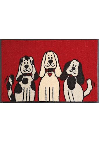 wash+dry by Kleen-Tex Fussmatte »Three Dogs«, rechteckig, 9 mm Höhe, Schmutzfangmatte,... kaufen