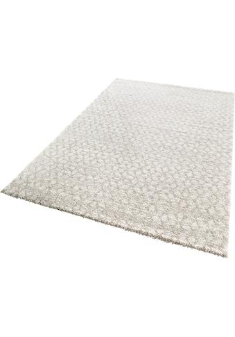 Teppich, »Impress«, MINT RUGS, rechteckig, Höhe 9 mm, maschinell gewebt kaufen