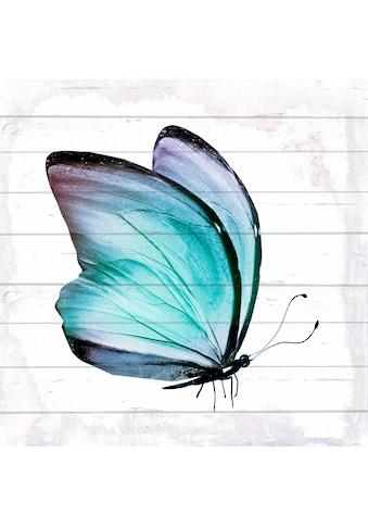 Home affaire Holzbild »Schmetterling«, 40/40 cm kaufen