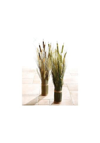 Home affaire Kunstpflanze »Grasarrangement« kaufen