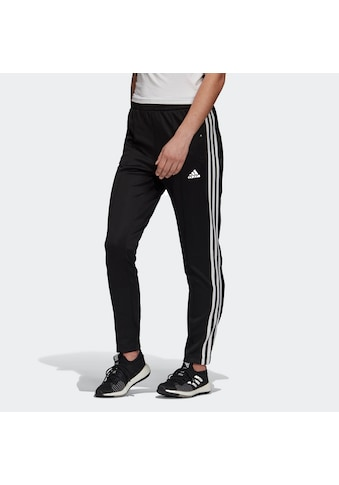 adidas Performance Trainingshose »MUST HAVES SNAP« kaufen