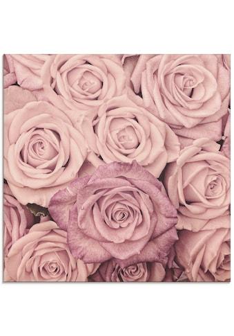 Artland Glasbild »Rosen«, Blumen, (1 St.) kaufen