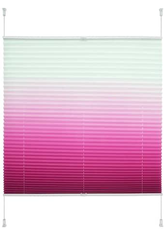 Liedeco Plissee »Farbverlauf«, Lichtschutz, ohne Bohren, verspannt kaufen