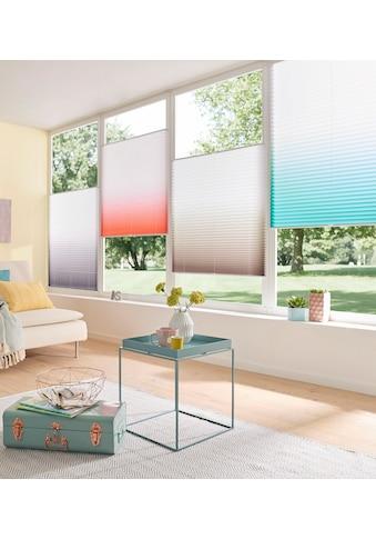 my home Plissee »Ombré«, Lichtschutz, ohne Bohren, verspannt, Farbverlauf kaufen