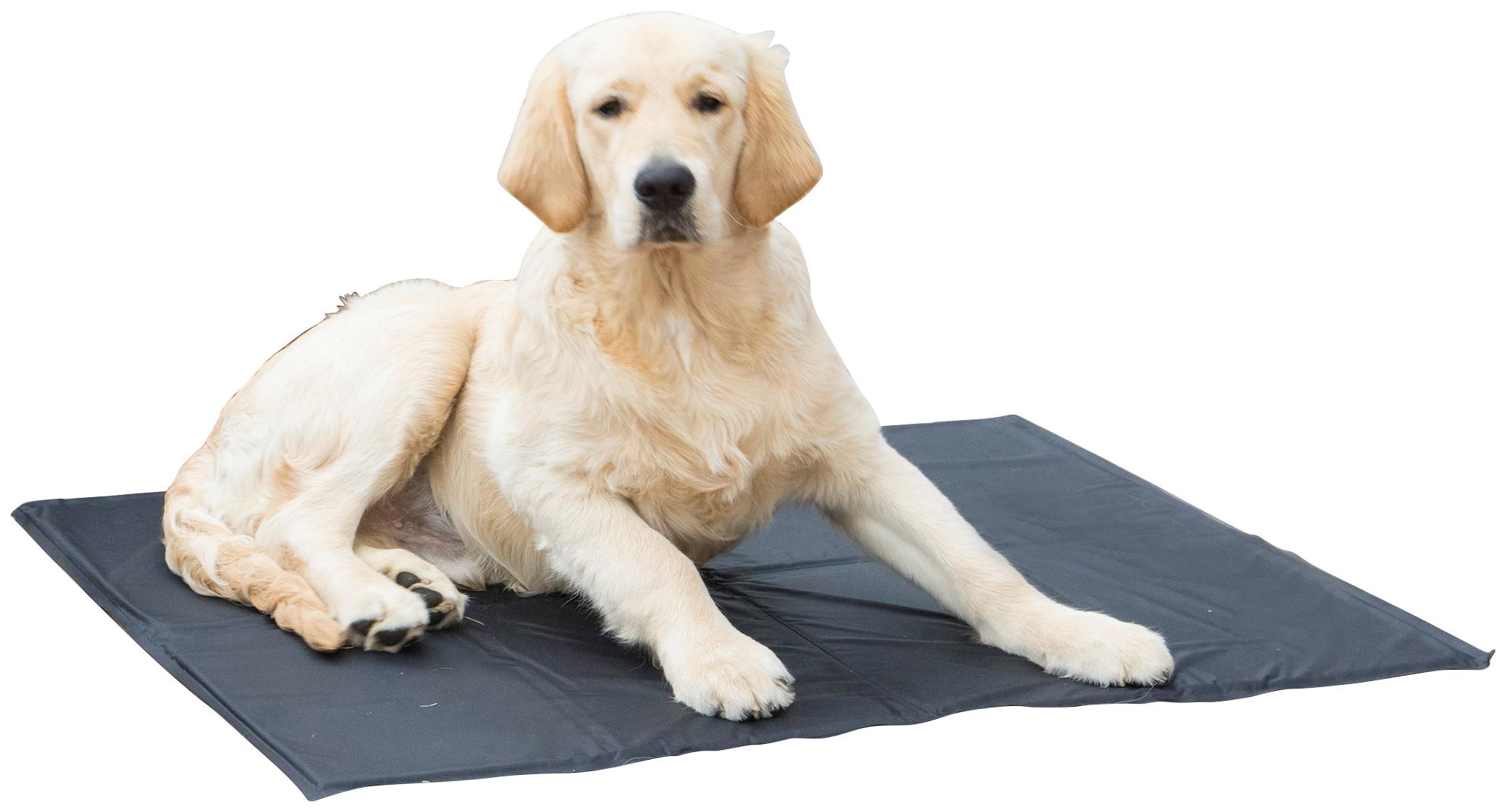 Image of ABUKI Hundematte »Kühlmatte«, für Hunde, 81x96 cm