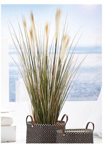 Schneider Kunstpflanze »Wildgras« kaufen