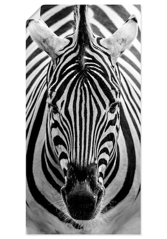 Artland Wandbild »Zebra«, Wildtiere, (1 St.), in vielen Grössen & Produktarten -... kaufen