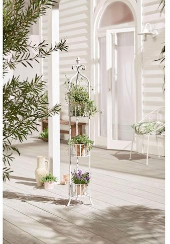 Schneider Blumenständer »Fleur«, (1 St.), Outdoorgeeignet kaufen